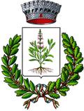 Stemma Comune di Savoia di Lucania
